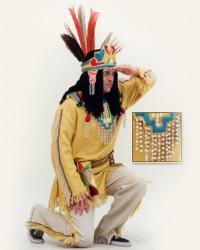 Вождь индейцев 2600, 550